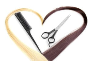 New -cutting shears